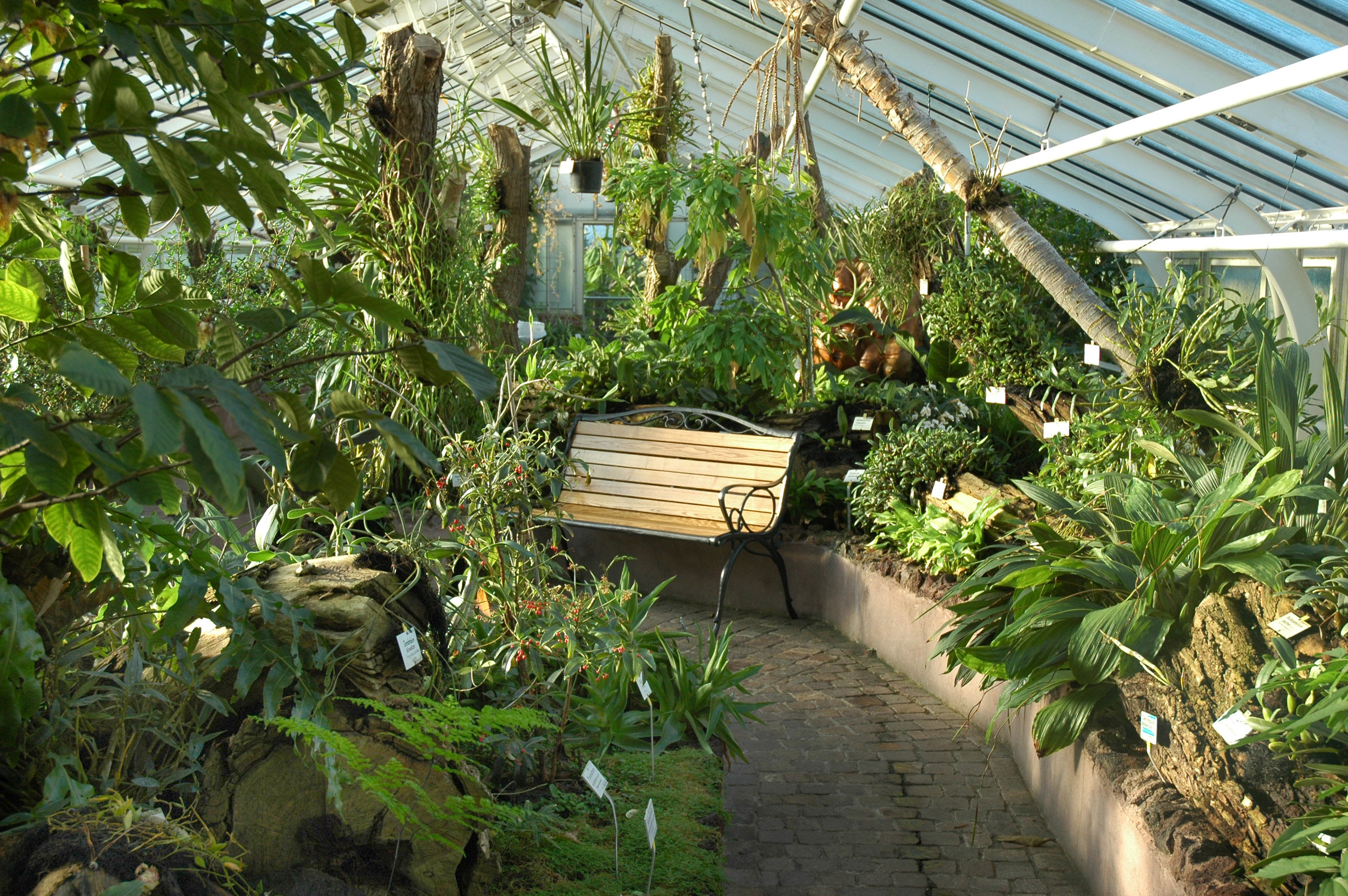 Botanischer Garten Und Botanisches Museum Berlin City Map And
