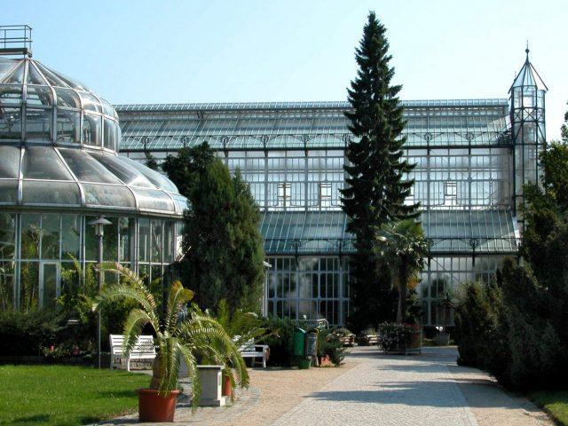 Botanischer Garten und Botanisches Museum Berlin